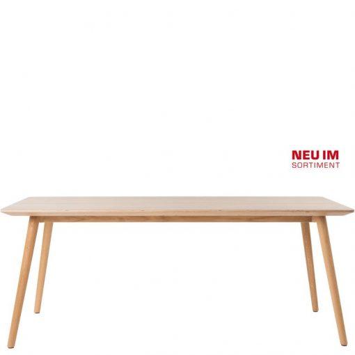 Massivholztisch 30118, Gastro-Tisch, Tischplatte